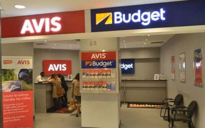 Avis Iceland, Budget Lebanon Named Licensees of the Year