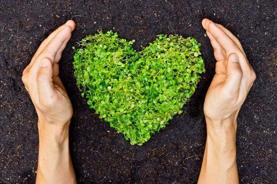 certificacao-energetica-traz-beneficios-para-o-meio-ambiente