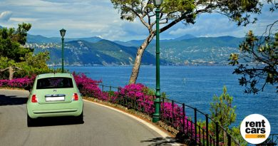 Rentcars.com projeta atingir R$ 400 milhões em volume de vendas em 2018