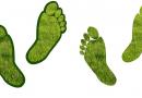 """Movidaparticipadodesafio""""Green Friday""""; outras empresas já aderiram"""