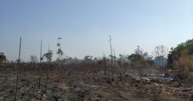 Campanha SOS Araguaia para combater queimadas é lançada com apoio de empresas ____ 23/09/2020 11h12 - Atualizado em 23/09/2020 11h20 foto: Guilherme Tiezzi / Proprietário da EcoAraguaia Fazenda do Futuro