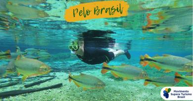 """Segundo Renato Franklin, presidente da Movida, """"…iniciativas como esta do Movimento Supera Turismo geram mais união e mais visibilidade para o setor."""